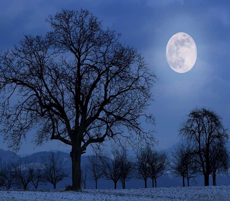 Natale con la luna piena è uno degli spettacoli più suggestivi.