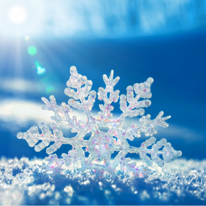 scarsa-neve-ecologia