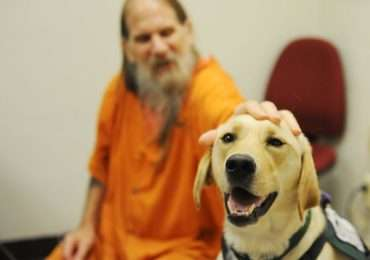 cane-dog-therapy