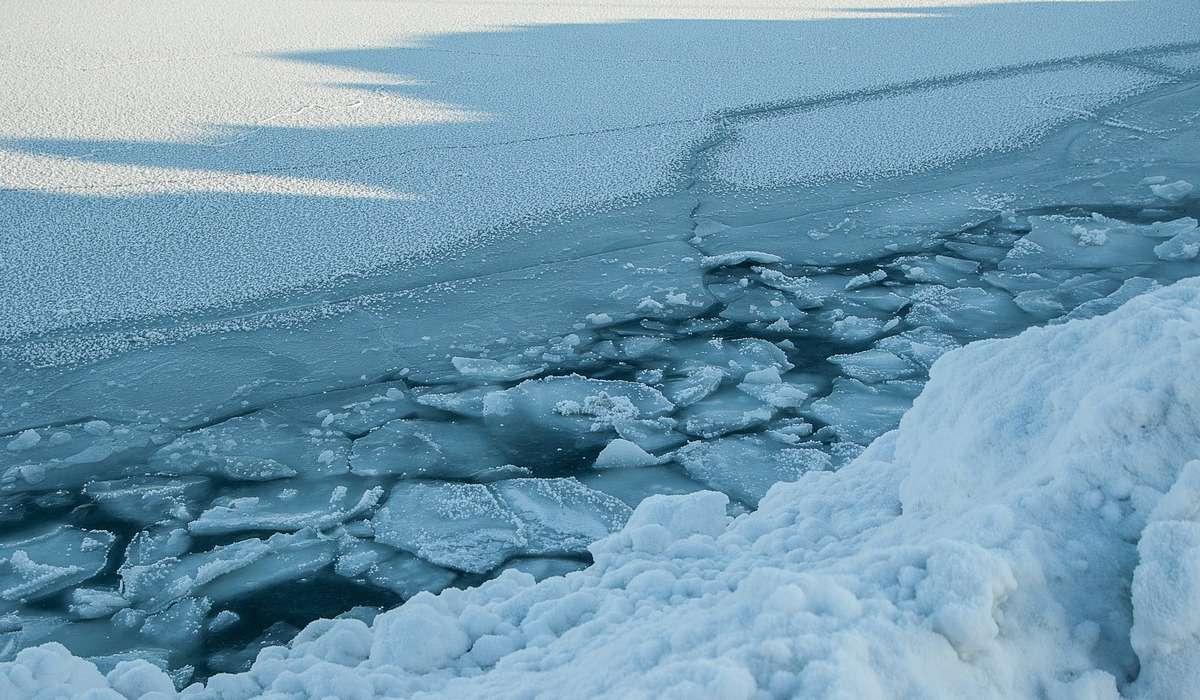 Quale di questi continenti è ricoperto interamente da ghiaccio?