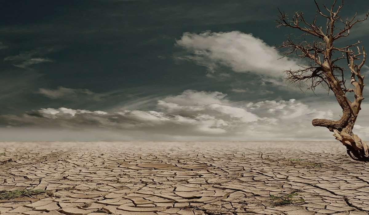 La più grande estinzione di massa nella storia della Terra si è verificata alla fine di quale periodo ?