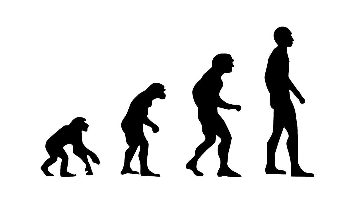 Durante quale epoca si è evoluto l'Homo sapiens ?