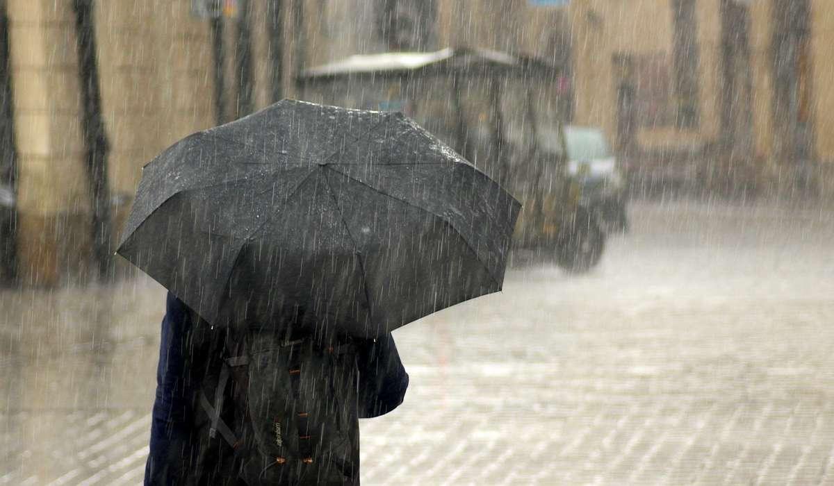 Che grado di purezza ha la pioggia rispetto all'acqua distillata?