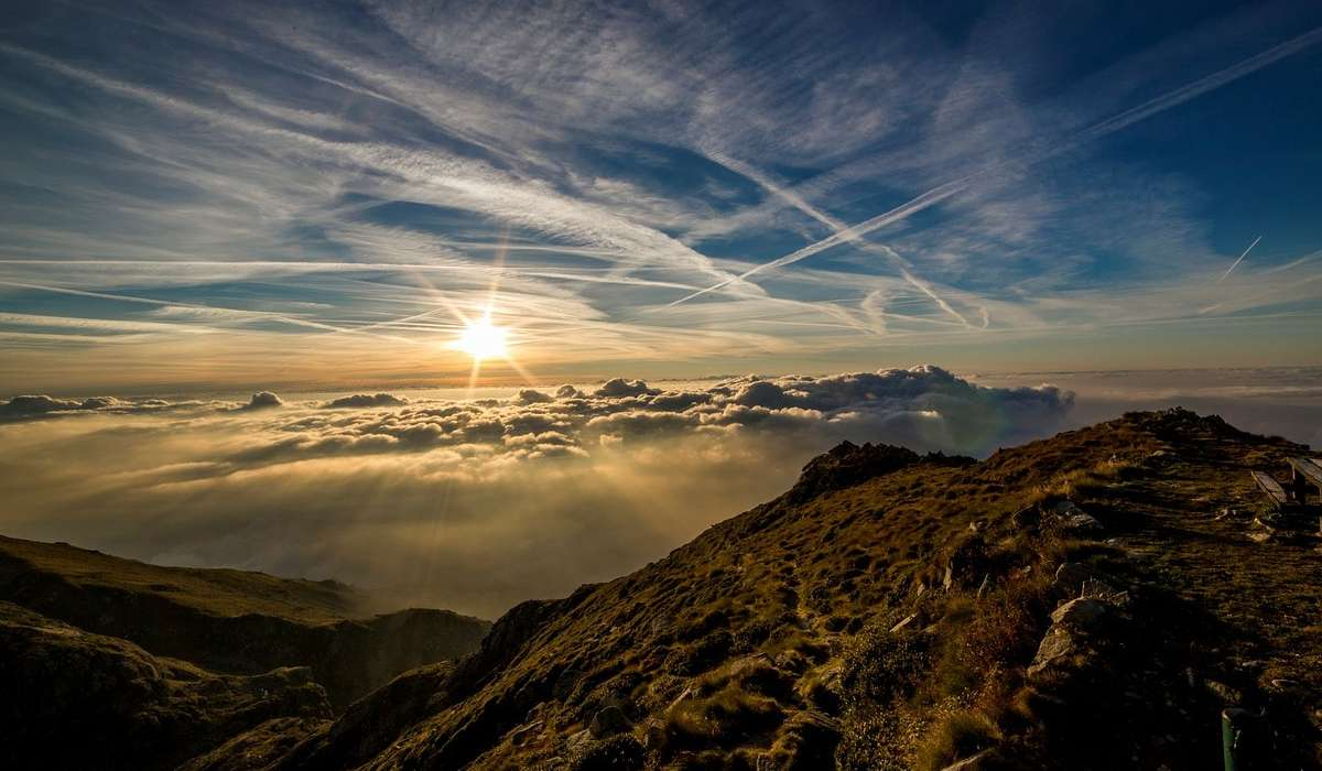 Qual è l'ambiente predominante sulla Terra?
