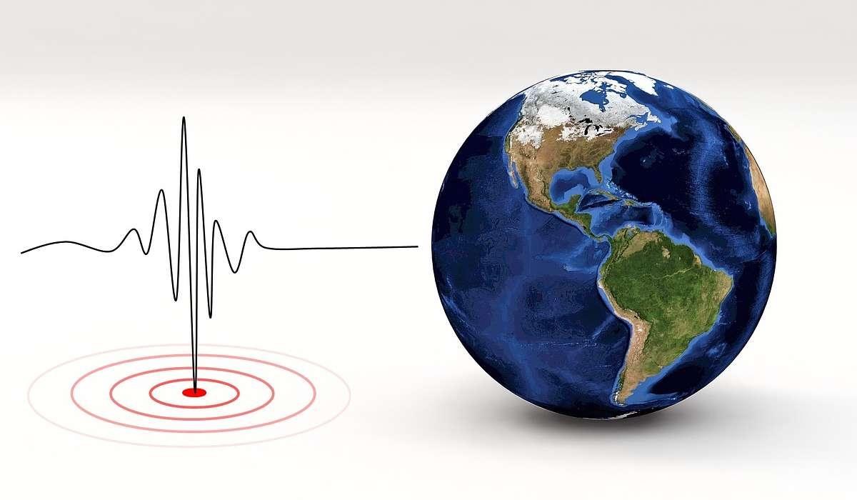 Quale tipo di onda sismica non si propaga nei mezzi fluidi?