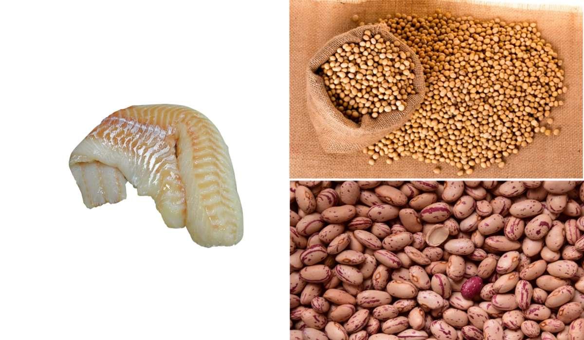 Quale tra questi contiene più proteine?