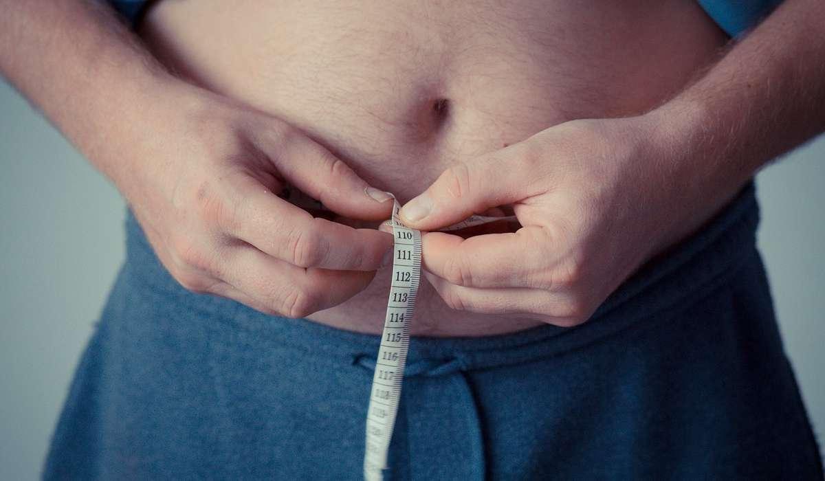 Cosa contiene il maggior numero di grassi?