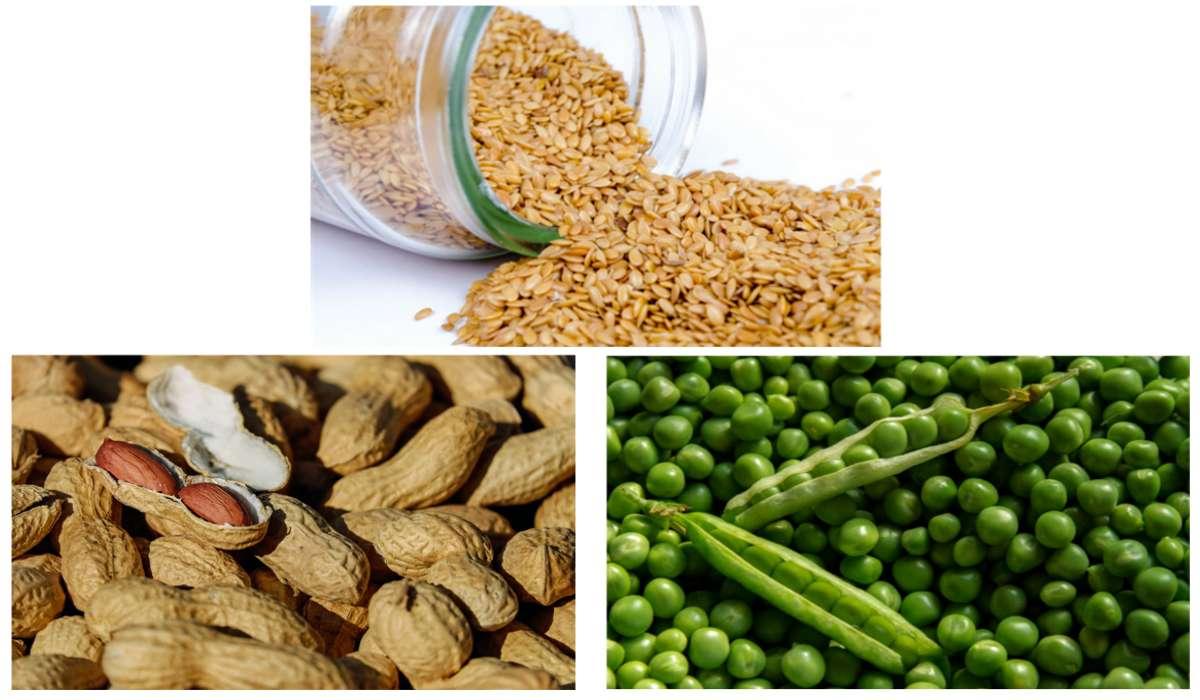 Quale tra questi alimenti non fa parte dei legumi?