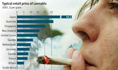 Si mira alla marijuana italiana perchè importare farmaci dall'estero è molto costoso.