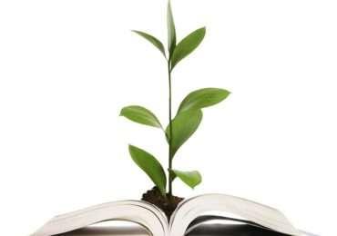 green-newspaper-the-mainichi-ecologia-giornale-ecosostenibile