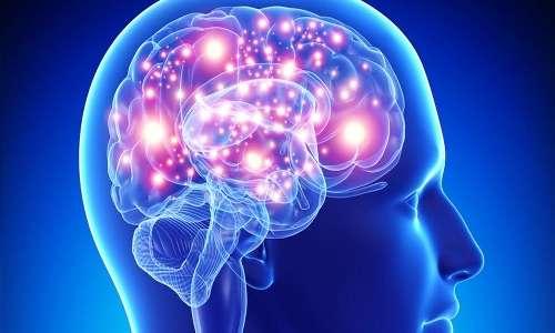 Attraverso i neuroni viaggiano tutte le informazioni di ogni essere umano