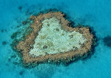 barriera-corallina-australia-natura-ambiente
