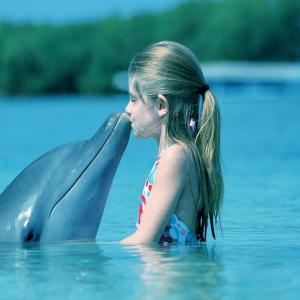 delfini parlanti ambiente