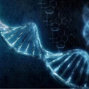 nascita-delle-proteine-dna