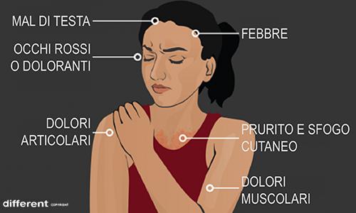 Descrizione di alcuni dei sintomi causati dal virus Zika.