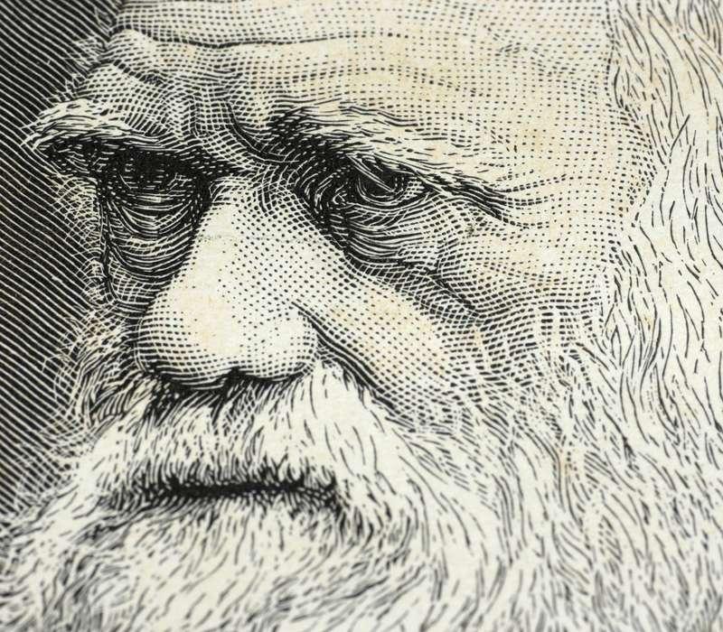L'incrocio tra consanguinei può indebolire la salute umana: ne è un esempio la famiglia di Charles Darwin