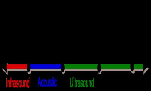 I suoni horror non sono altro che infrasuoni, al di sotto dei 20 Hz.