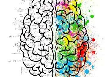 Non si può definire l'intelligenza in maniera universale: questo è il concetto alla base della teoria delle intelligenze multiple di Gardner.