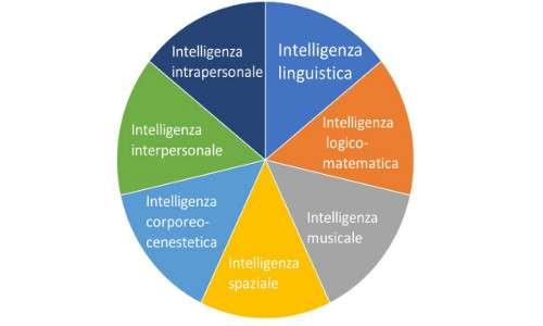 Gardner sostenne che le intelligenze multiple fossero 7, se non di più.