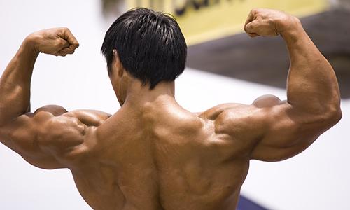 I muscoli vengono influenzati positivamente dall'effetto dell'ormone della crescita (GH).