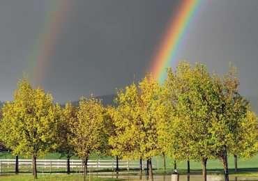 L'arcobaleno, come si forma e cos'è.