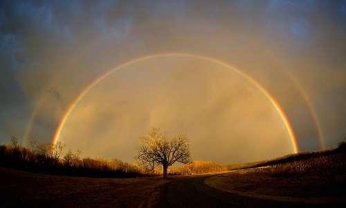 Il processo che spiega come si forma un doppio arcobaleno è analogo al processo per un singolo arcobaleno.