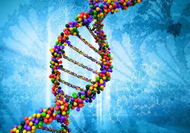 Cos'è il DNA, cosa sono le sue strutture? Esse determinano ogni caratteristica del nostro essere.