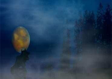 La leggenda del lupo mannaro è riconducibile ad un disturbo psichiatrico noto come licantropia.