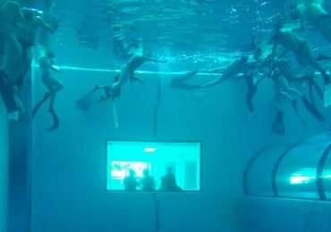 Y-40, la piscina più profonda del mondo è anche l'unica piscina di acqua termale, che permette le immersioni senza muta.