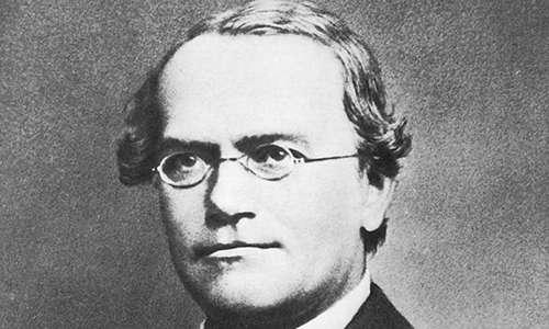 Le Leggi di Mendel portano la firma del prete-scienziato Gregor Johann Mendel Gregor Johann Mendel.