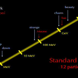 È mostrata la classificazione delle particelle subatomiche su una scala energetica in Megaelettronvolt(MeV). I neutrini occupano una posizione energetica inferiore di quella dell'elettrone e vicina allo zero.