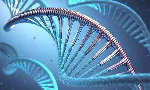Con il vaccino contro tumori viene stimolata la produzione di antigeni tumorali.