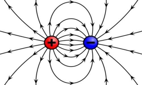 Il campo elettrico, che all'interno della gabbia di Faraday è nullo, può essere rappresentato mediante linee di forza. Queste sono uscenti per le cariche positive ed entranti per quelle negative.