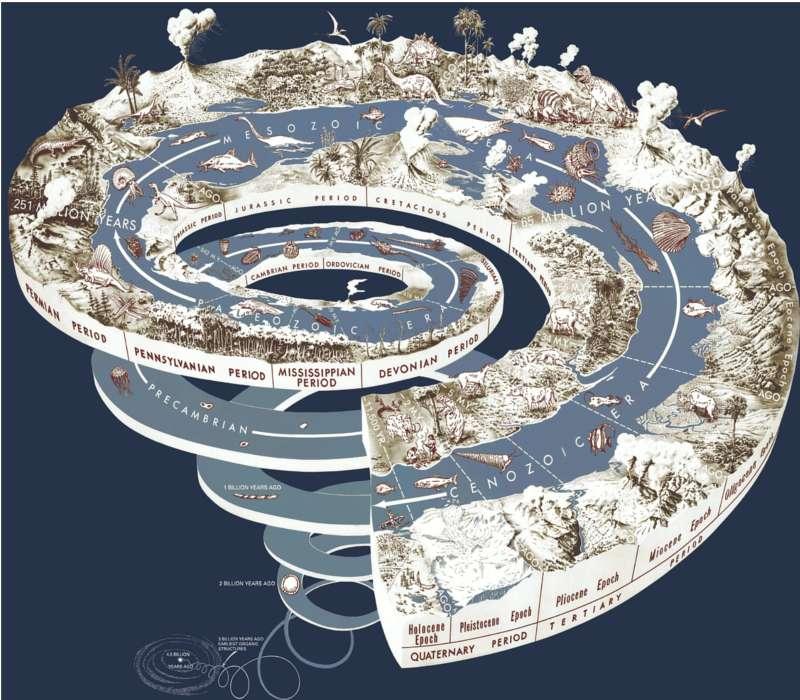 Sei preparato sulle ere geologiche della Terra, selle loro caratteristiche e sui passaggi dell'evoluzione che contengono?