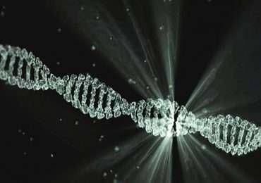 Artwork della molecola di RNA in doppia elica
