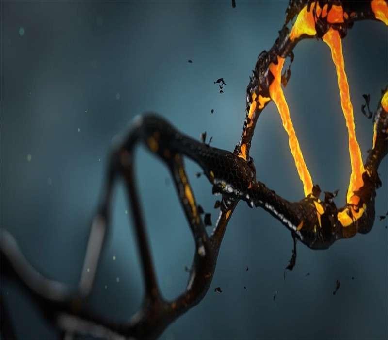 il codice genetico espanso è insito nella struttura molecolare del DNA