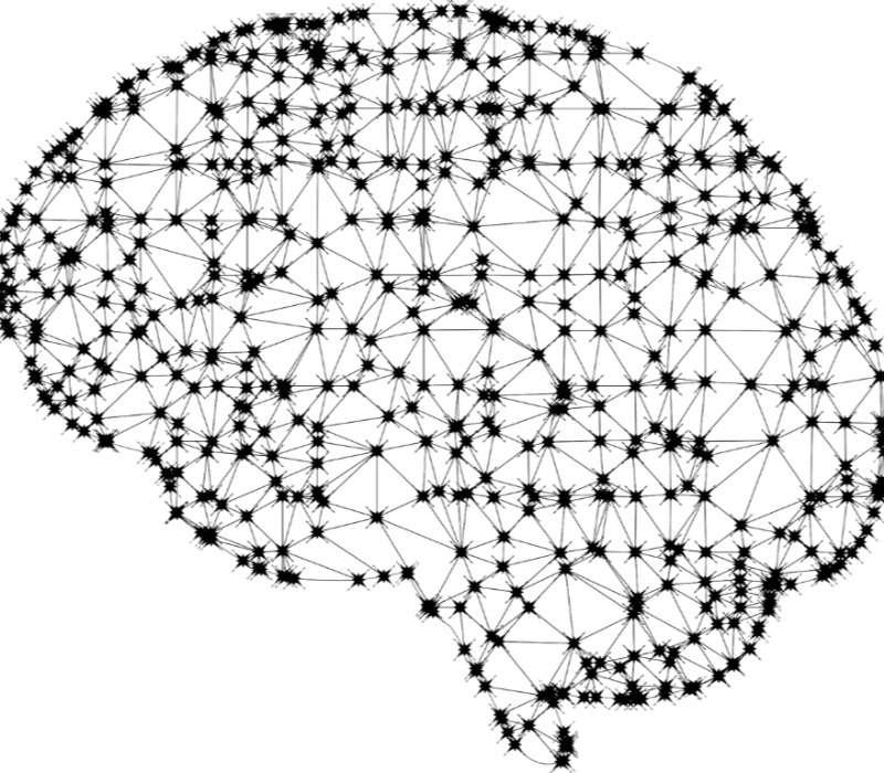 Le funzioni cognitive del nostro cervello sono alla base di ogni semplice azione della vita quotidiana.