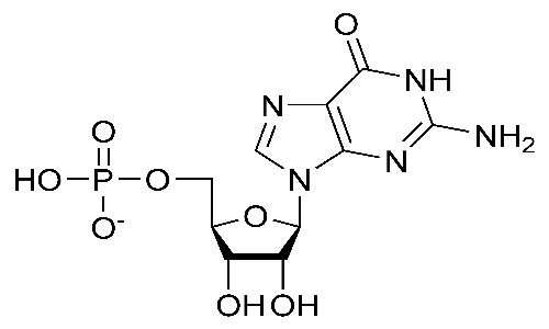 immagine di un nucleotide cosittuito da un gruppo fosfato, il ribosio presente nell'RNAe la base azotata Guanina.