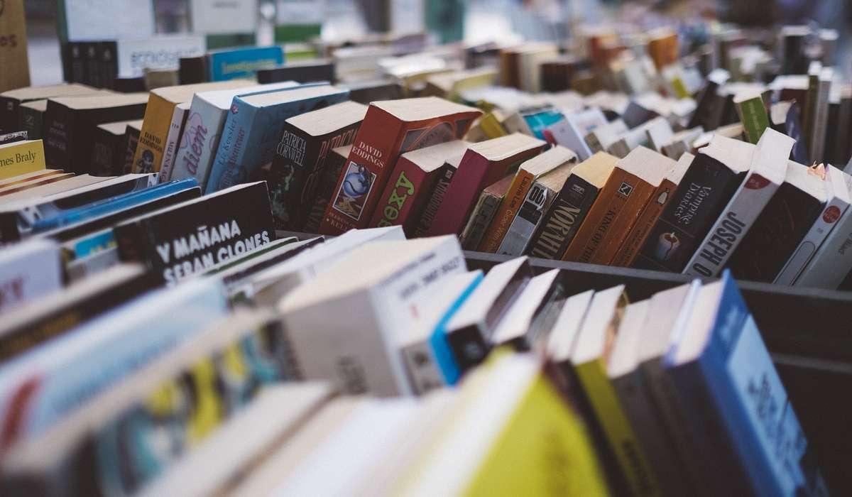 Alcune aziende hanno iniziato vendendo libri online. Quale tra queste?