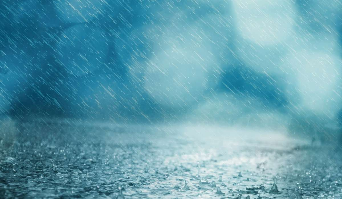 Linee che rappresentano la distribuzione nel tempo della pioggia in una data regione
