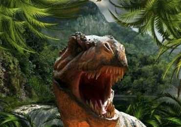Mettiti alla prova con questo quiz: quanto ne sai sui dinosauri? Scopri cose nuove su questi enormi animali preistorici.
