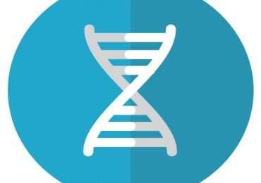 Quiz scientifco: quanto ne sai di genetica? Prova a rispondere a queste domande sui geni e molto altro.