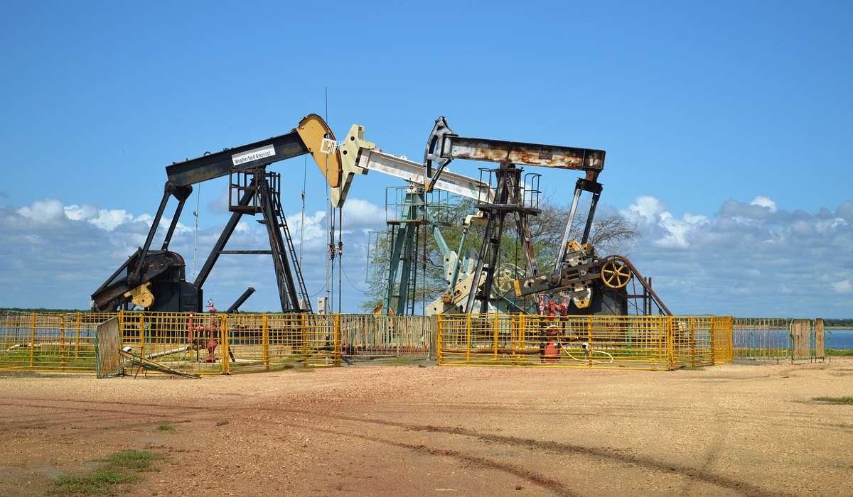 Il Petrolio deriva principalmente da quale delle seguenti fonti?
