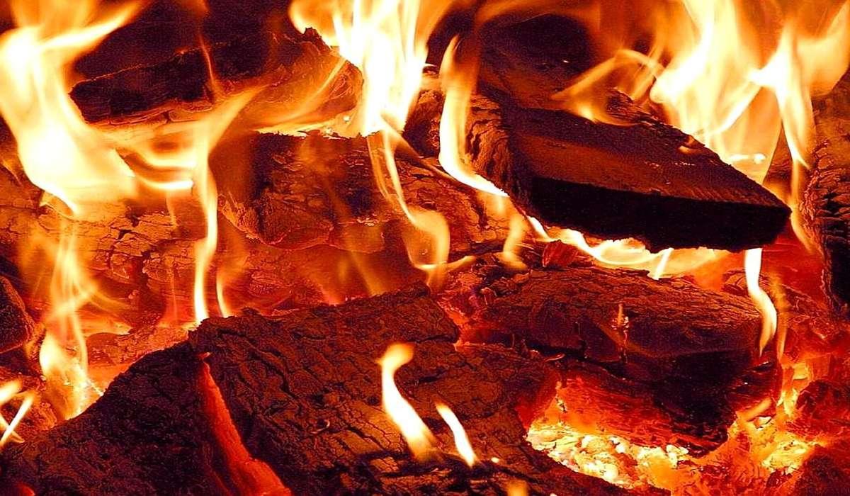 Qual è una differenza tra un combustibile organico comune, come il legno, e un combustibile fossile?