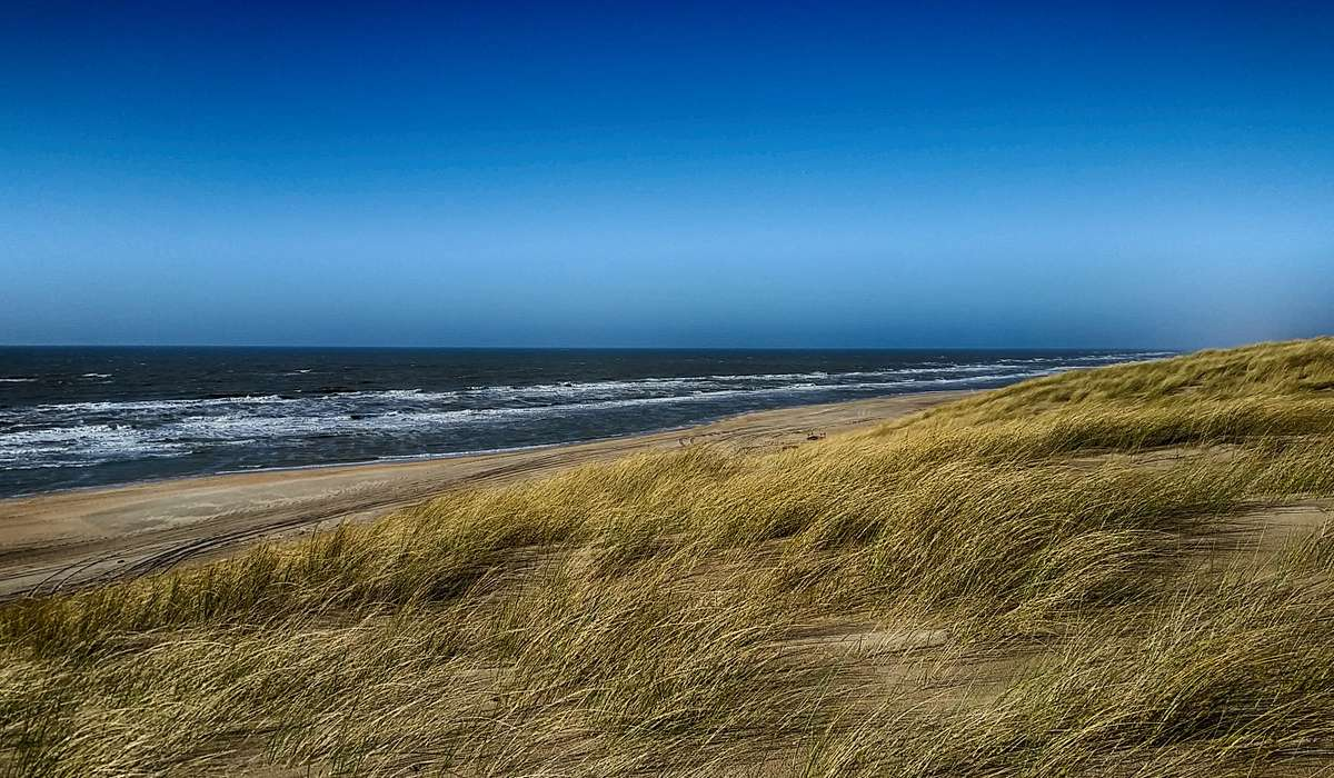 Come si chiamano quei venti che soffiano durante il giorno dal mare verso la terra?