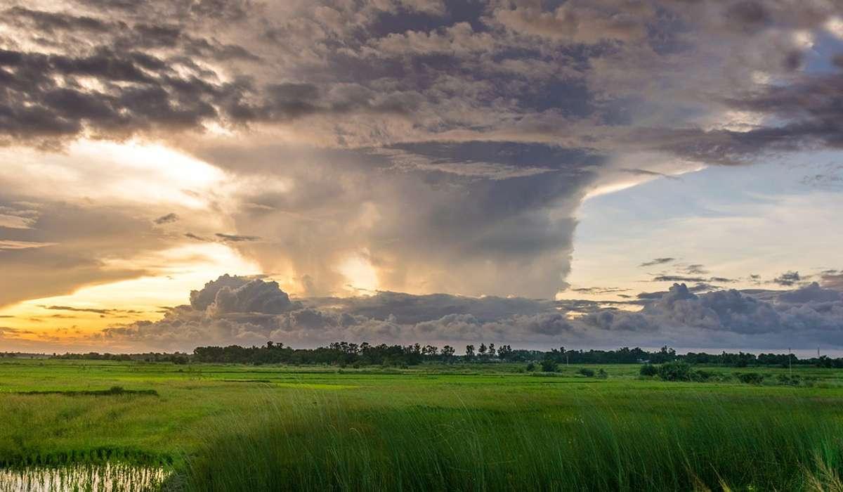 Quale delle seguenti aumenterebbe l'intensità di un uragano?