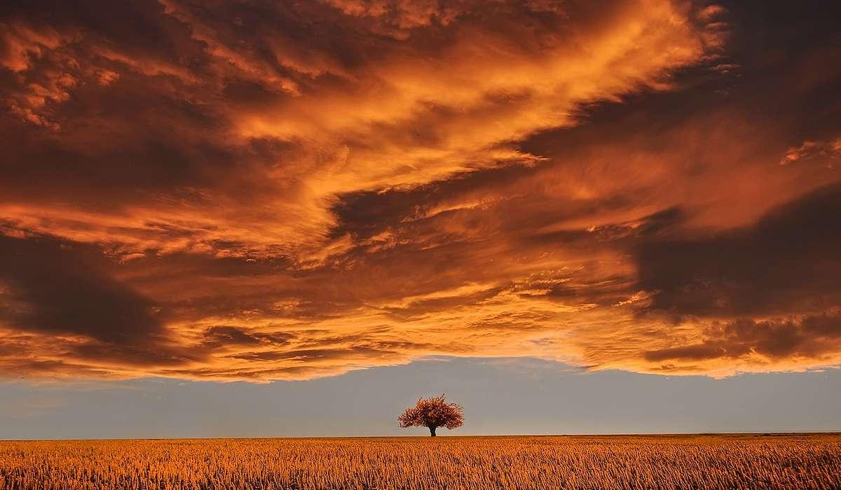 Da cosa sono composte le nuvole?