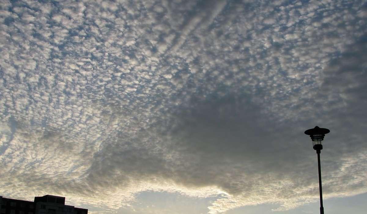 Come si chiama la tipologia di nuvole in figura associate al cosiddetto cielo