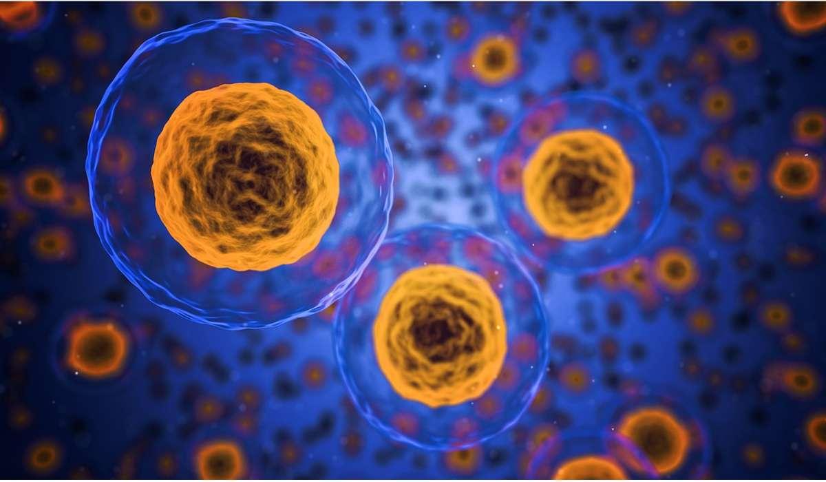 Tra le innovazioni tecnologiche sviluppate dalla bioingegneria c'è anche il CancerSeek, a cosa serve questo?
