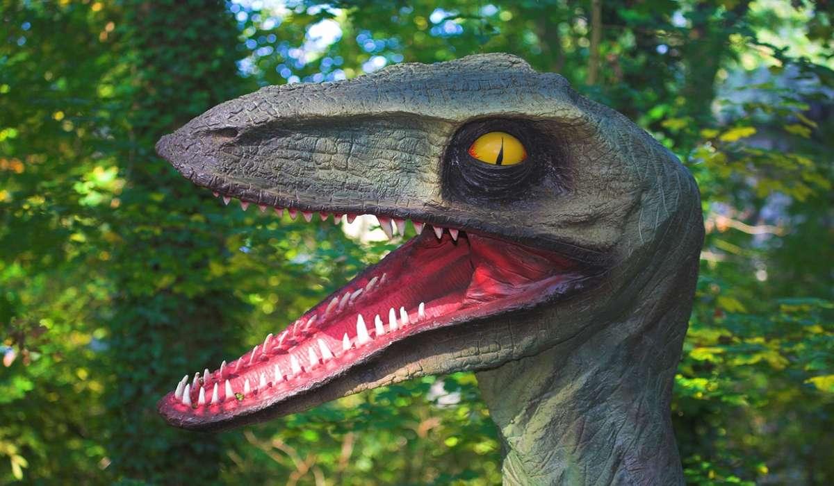 Piccoli dinosauri molto pericolosi che cacciavano in branchi. Di chi si tratta?